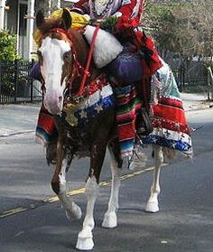 Costuming Your Horse for Halloween Horse Halloween Costumes, Masquerade Costumes, Halloween Fun, Clever Costumes, Costume Ideas, Make Your Own Costume, Fall Festivals, Barn Parties, Cowboy Party