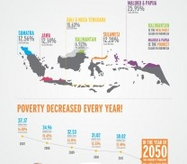 Poverty decreased - Info graphics