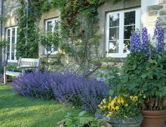 blue stone country cottages - Google Search