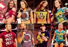 Many attires Of AJ Lee <3 Like The Cm Punk one best.