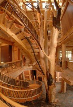Photo: What do you think of this - three story log sweeping staircase - the 42 foot tall tree supports the single stringer stairs. The railings serve as trusses to provide strength and stability to each log tread. The railings were all built in place.