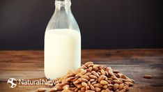 Almond milk is more beneficial and nutritious than ordinary dairy milk, due to the fact that it contains much more nutrients