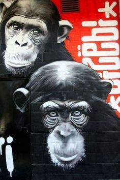 Amazing street art and graffiti. Dizebi