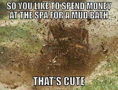 Muddin♥ Honeslty always thought it was funny when women get these Country Girl Life, Country Girl Quotes, Country Boys, Country Sayings, Southern Quotes, Southern Pride, Southern Girls, Southern Belle, Country Style