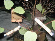 Geldgeschenke - Lebensbaum