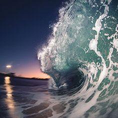 surf4living