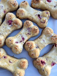 For dogs that are on grain-free diets, or have grain-free dietary restrictions, these Grain-Free Dog Treats are for you! Most dogs benefit from including healthy fats, and nutrient rich foods in their diet.