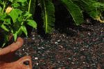 Rubber Mulch and Playground Rubber Mulch in 7 Colors direct from the Manufacturer. Rubber mulch installation tips, how to videos, and mulch comparisons. Playground Rubber Mulch, Wood Mulch, Landscaping Design, Color Mixing, Cleaning, Landscape, Fall, Colors, Plants
