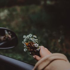 I just need someone to give me some wildflowers