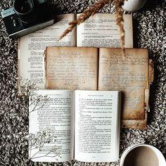 My kind of Jeseň 🍁 Som typický blíženec..človiečica mnohých vášní.. naozaj dokážem nájsť aspoň chvíľkovú vášeň vo všetkom.. od počítačových hier, cez hodinové zízanie na dokumenty, blúdenie prírodou, vyrábanie, zliepanie, fotenie, pečenie, kreslenie, písanie.. 🤷🏼♀️ zaujať ma dokáže fakt že všetko.. Čo ale milujem... sú knihy.. nie hocijaké. A teraz nemyslím Harryho Pottera ☝️ lebo ten nie je tiež hocijaký.. na Potterovi som prežila svoje detstvo...no a ešte na Medzi nami dievčatami a horovk Sweet Recipes, Tart, Pie, Tarts, Torte