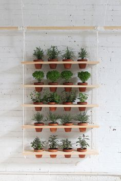 HomeMade Modern DIY Hanging Garden: This DIY vertical garden is an easy-to-make project that can turn a window into a beautiful and productive herb garden. Jardim Vertical Diy, Vertical Garden Diy, Vertical Gardens, Vertical Planter, Vertical Bar, Hanging Herbs, Diy Hanging, Hanging Planters, Hanging Herb Gardens