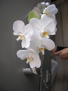bruidswerk - decoratie orchideeën falenopsis boechout