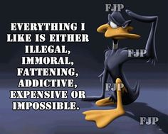 Everything I Like funny quotes quote lol funny quote funny quotes funny sayings looney toons daffy duck humor