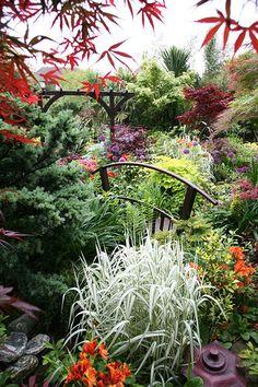 Lower garden (early June) by Four Seasons Garden, via Flickr