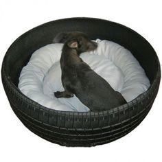 Hundägarnas dröm