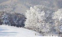 piatra neamt trei caldari Romania, Trekking, Snow, Outdoor, Outdoors, Outdoor Games, The Great Outdoors, Eyes, Hiking