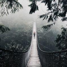 Bridge to neverland #vintage #wilderness #green #journey #wild #forest #leaves #jungle #travel #trees #nature #bridge #go #adventure #outdoors #F4F #tagforlikes #outdoor
