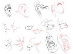 draw a cartoon face tutorial ✤ || CHARACTER DESIGN REFERENCES | キャラクターデザイン | çizgi film • Find more at https://www.facebook.com/CharacterDesignReferences if you're looking for: #grinisti #komiks #banda #desenhada #komik #nakakatawa #dessin #anime #komisch #drawing #manga #bande #dessinee #BD #historieta #sketch #strip #artist #fumetto #settei #fumetti #manhwa #koominen #cartoni #animati #comic #komikus #komikss #cartoon || ✤