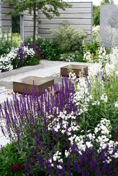 Need some low maintenance garden design ideas? Learn the fundamentals and tips to creating the perfect low mainteance outdoor space in our feature article.