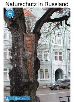 Naturschutz in Russland - Russenwitze -Funny Russian Fail