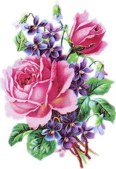 Image du Blog anousdeux04.centerblog.net