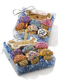 Birthday Party Dog Treats - Gift Box