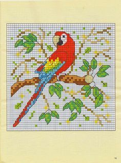 Cross-stitch Parrot ... no color chart available, just use pattern chart as…