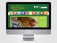 Criação do layout da página Nutrividas