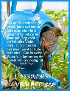 Ons Hemelse Vader is in beheer en Hy weet wat ons nodig het. Good Morning Wishes, Good Morning Quotes, Bible Verses Quotes, Life Quotes, Lekker Dag, Evening Greetings, Afrikaanse Quotes, Goeie More, Happy Birthday Pictures