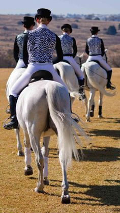 Lippizaner Stallions - Spanish Riding School - No side saddle - Let's walk this way! Lippizaner, All The Pretty Horses, Beautiful Horses, Animals Beautiful, Spanish Riding School Vienna, Lipizzan, Horse Photos, White Horses, Equine Photography