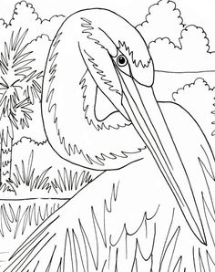 Egret coloring page beach art digital by adultcoloringbook on Etsy