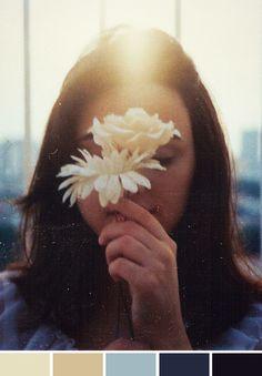 Inspiração do Dia | Paz | Flor