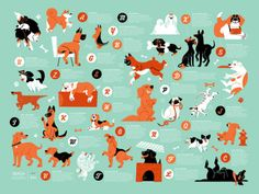 - Description - Specifications Akitas, Boxers, Chihuahas! Brush up on your ABC's with this jam packed alphabet poster featuring 26 different furry little canines. Each letter of the alphabet is paired