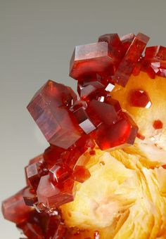 Vanadinite crystals on blades of Barite Minerals And Gemstones, Crystals Minerals, Rocks And Minerals, Stones And Crystals, Orange Crystals, Rare Crystal, Quartz Geode, Sweet Peach, Mineral Stone