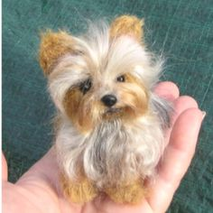 Needle Felting.  this is amazingly realistic