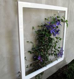 Fresh, modern and fun - this would look great on my terrace. (Ina wall trellis by TerraTrellis)