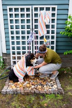 Outdoor Dog Accessories Owner Giving Their Dog a Bath in Dog Washing Station.Outdoor Dog Accessories Owner Giving Their Dog a Bath in Dog Washing Station Dog Backyard, Dog Friendly Backyard, Backyard Ideas, Dog Washing Station, Dog Station, Space Station, Living Pool, Outside Dogs, Niches