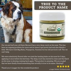 Certified Organic Nose and Paw Pad Healing Balm for Dry Chapped Cracked Skin with Hemp Oil and Shea Butter Made in USA 1 each oz *** For more information, visit image link. (This is an affiliate link) Wound Healing, Healing Herbs, Natural Vitamin E, Dog Nose, Natural Sunscreen, Natural Preservatives, Insect Bites, Best Moisturizer, Hemp Oil