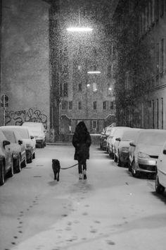 Midnight Snow by Reddit User Walaska - inspirationfeed