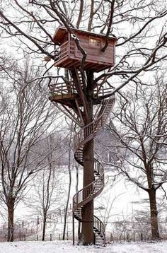 Castles in the air: The world's greatest treehouses. Branching out: A spiral staircase leads to a tree house in Rambouillet Forest, France. Vincent Thfoin