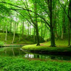 Landgoed Elswout, Overveen
