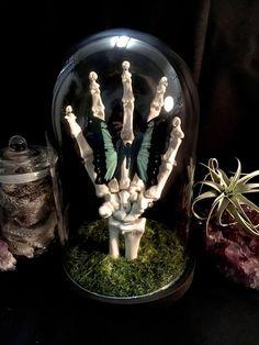 Fall Halloween, Halloween Crafts, Halloween Horror, Macabre Decor, Macabre Art, Goth Home Decor, Diy Home Decor, Shadow Box, Horror Decor