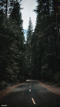 Mountain Wallpaper, Nature Wallpaper, National Park Posters, National Parks, Yosemite Wallpaper, Yosemite National Park Lodging, Phone Screen Wallpaper, Park Pictures, Summer Landscape