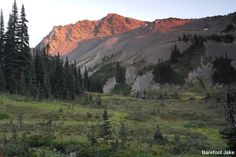 Pacific Northwest Trail - Olympic National Park