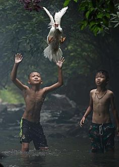 Two boys are trying to catch a duck at the stream of the waterfall. Nong Khai Province, Thailand. -Nat Geo. finalist Sarah Wouters.