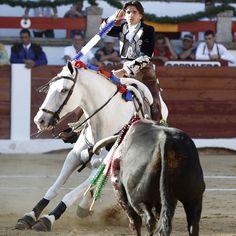 Galería especial 2015 rejoneador Diego Ventura| Galería especial 2015 rejoneador Diego Ventura