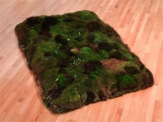 Artists Research : Meg Webster 'Double Bed For Dreaming' in her moss...