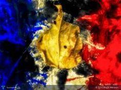 The Golden Leaf #Creative #Art #DigitalArt @touchtalent.com