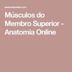 Músculos do Membro Superior - Anatomia Online