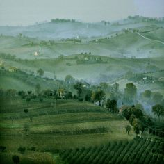 Beautiful Photo taken in Macerata, Marche, IT.  I'm taken by the blues and greens...